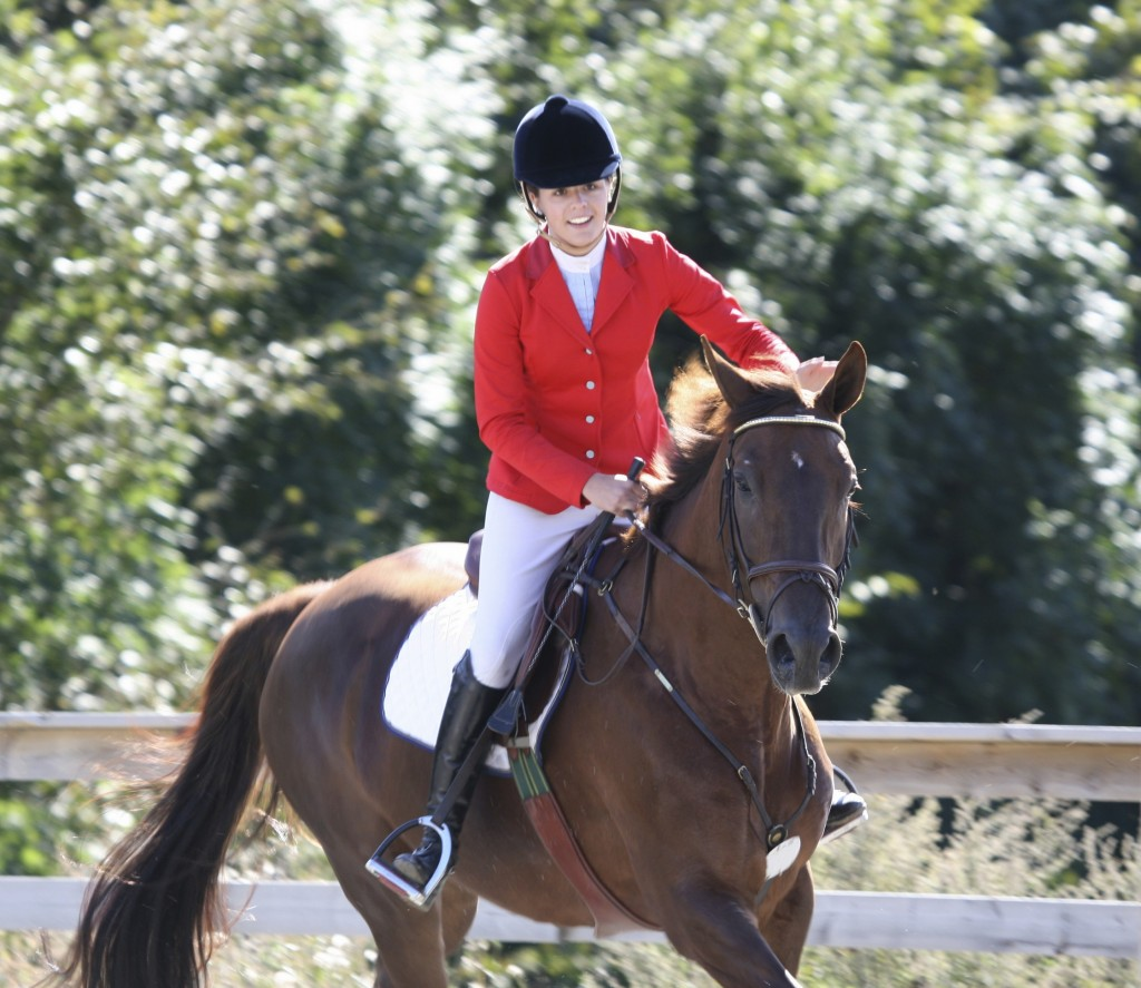 How to begin horse riding?